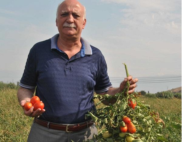 """""""ÇİFTÇİMİZ KAZANIRSA ÜLKE KAZANIR"""""""
