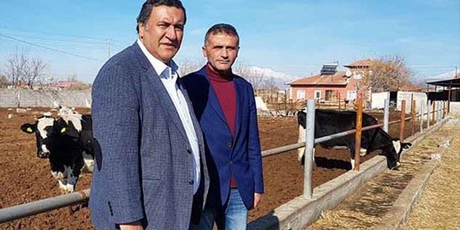 """""""HER ÇİFTÇİ AİLEYE 300 TANE DAMIZLIK KOYUN HAYAL OLDU"""""""