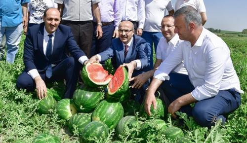 """""""ADANA 3. KARPUZ FESTİVALİ""""NE HAZIRLANIYOR"""