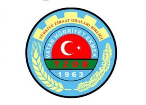 tzob_logo