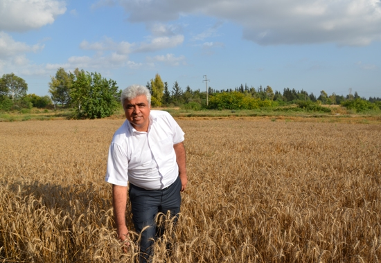 Buğday taban fiyatına tepki