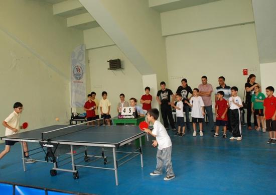 Masa Tenisi Şampiyonası