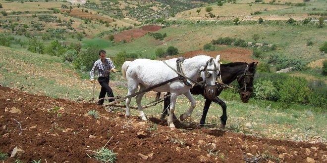 50 Bin Çiftçi Karasaban Kullanıyor