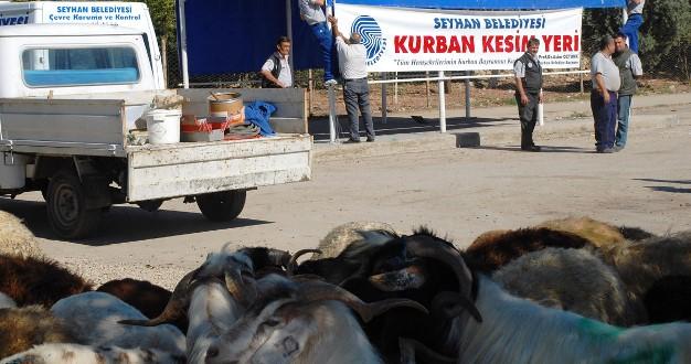 kurban_seyhan_kesim