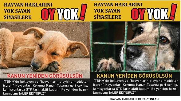 Hayvanların Haklarını YOK Sayan Siyasilere OY YOK!