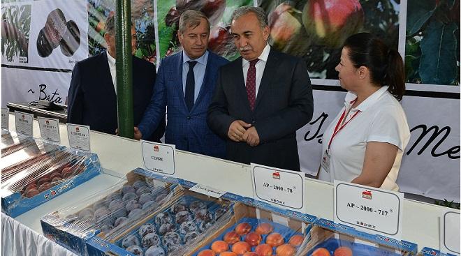 Adana'da Meyve Bayramı